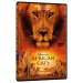 مستند آموزش زبان انگلیسی گربه های آفریقایی African Cats