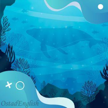 داستان انگلیسی نهنگی به نام لولا با ترجمه فارسی و صوت