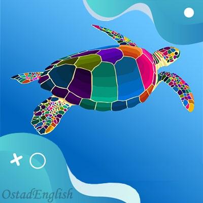 داستان انگلیسی تولد لاک پشت ها The Birth of the Turtles
