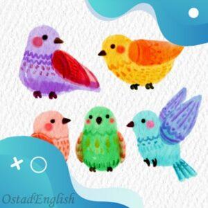 داستان کوتاه انگلیسی پرنده ی کوچک تنبل