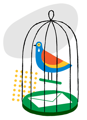 birds پرندگان